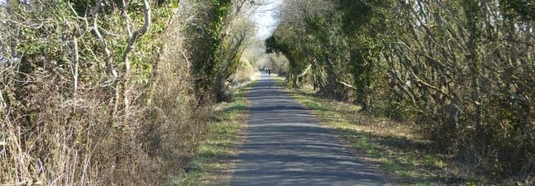 b_014_146_Instow_Tarka_Trail