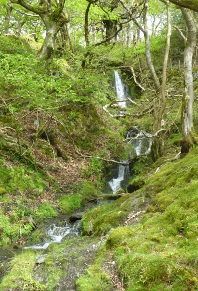 b_057_077_Llyfnant_Valley_Waterfall