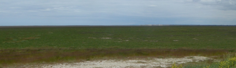 b_077_064_Southport_Salt_Marshes