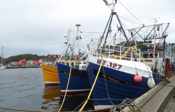 b_131_056_Oban_FishingBoats