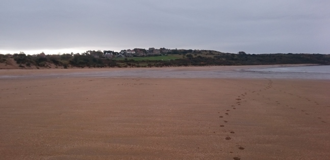 b_252_0021_Gullane_Footsteps