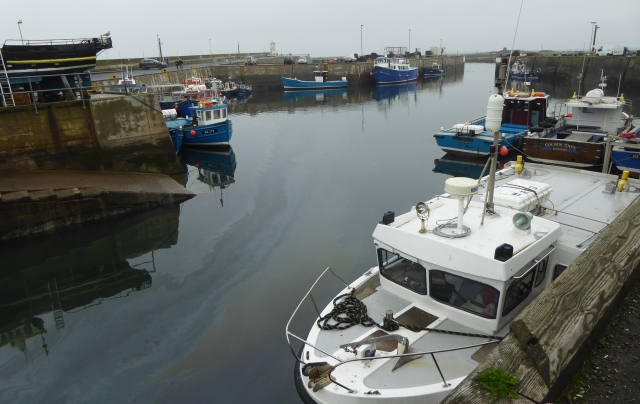 b_257_158_Seahouses_Harbour