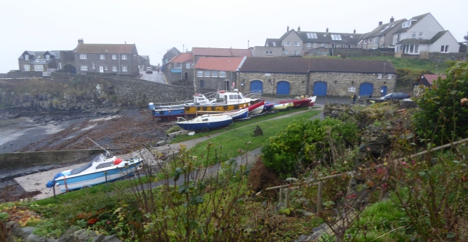 b_258_168_Craster_Harbour